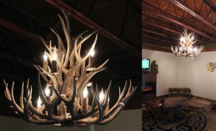 Two tier mule deer antler chandelier aloadofball Images