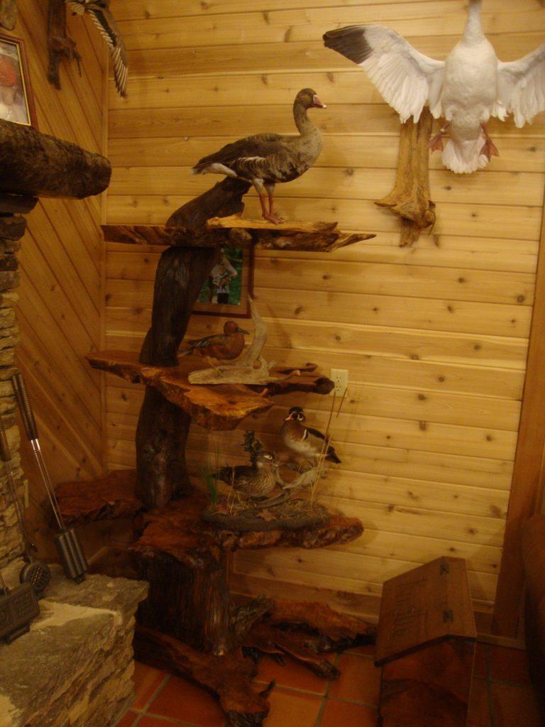 Burl Furniture Live Edge Wood Slabs Natural Burl Wood