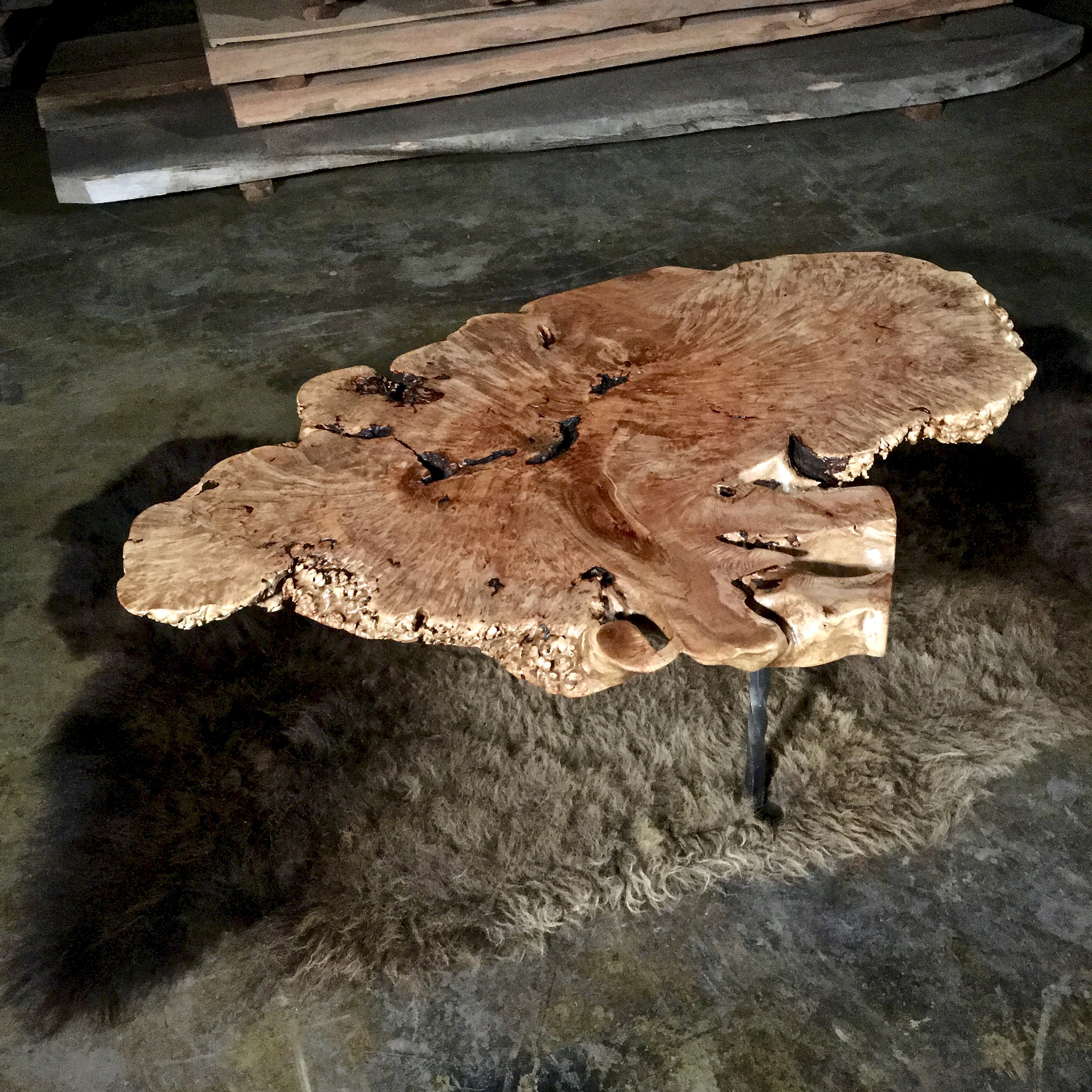 Maple Wood Tree ~ Maple burl wood coffee table littlebranch farm