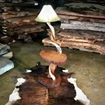 rustic floor lamp